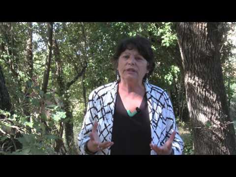 Michèle RIVASI, pour une écologie de combat au service des citoyens