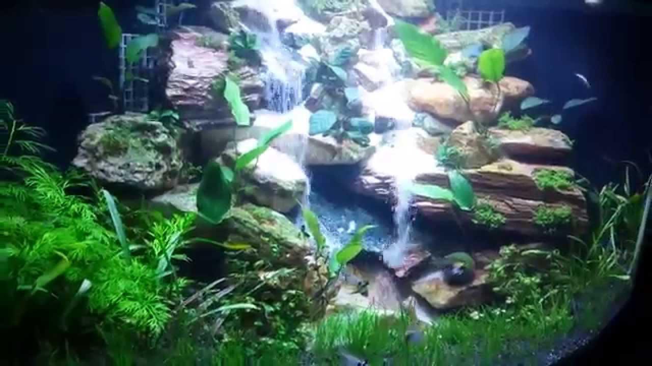 Planted Waterfall Aquarium - YouTube