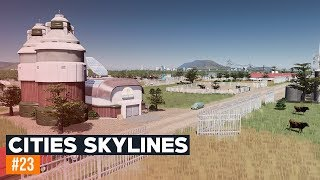 Rolnictwo   Cities Skylines 2019   #23