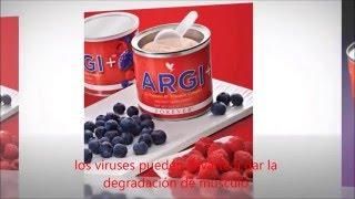 Óxido nítrico sem para l-arginina vitaminas o aumentar