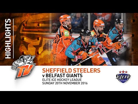 Sheffield Steelers v Belfast Giants - EIHL - Sunday 20th November 2016