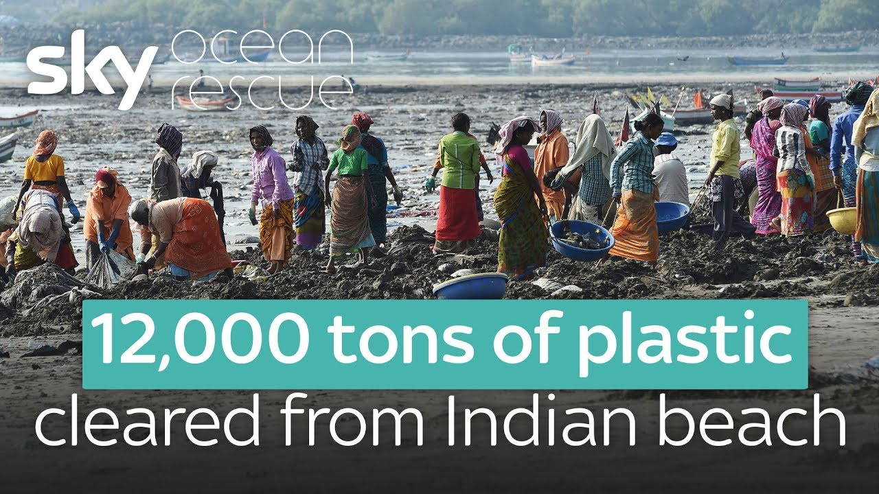 12,000 tons of plastic cleared from Indian beach
