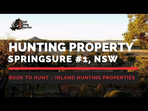 SPRINGSURE #1 QLD Pig Hunting Property | Inland Hunting Properties LISTED