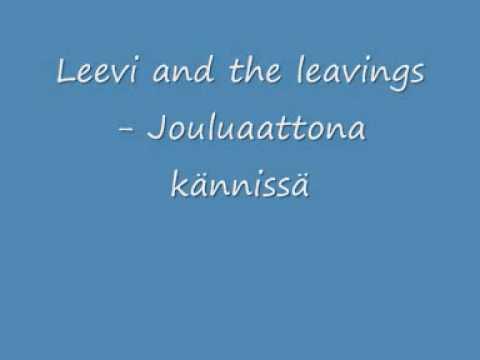 leevi-and-the-leavings-jouluaattona-kannissa-pohjoiskarjala2008