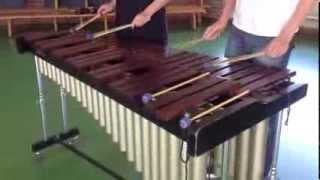 Repeat youtube video Amelie - comptine d'un autre été on marimba (cover)