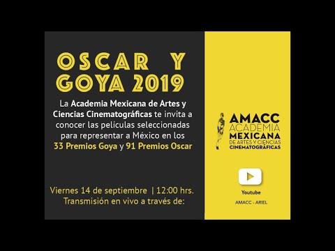 Oscar y Goya 2019 l Películas seleccionadas para representar a México