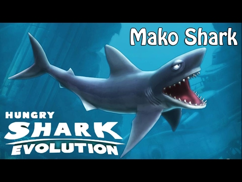 Hungry Shark Evolution Mako Shark Gameplay