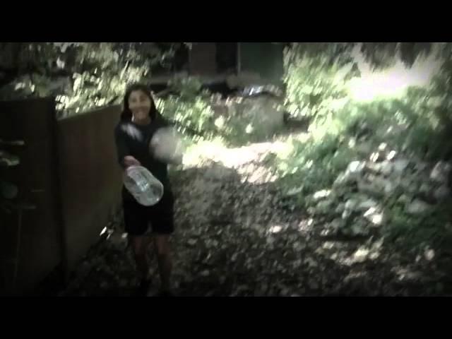 Liza bagrationi - dgeebi midian Fan Video