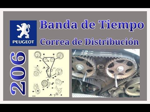 Como cambiar Banda de tiempo Peugeot 206