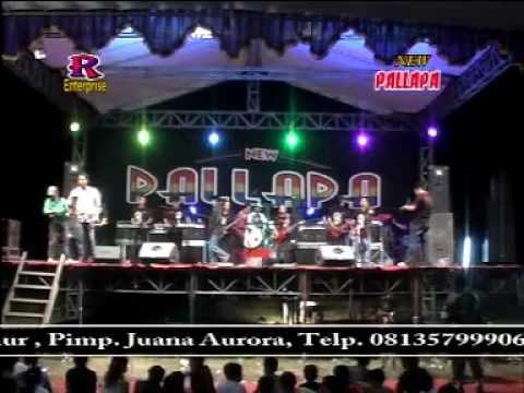Tersesat - New Pallapa Live In Socah Bangkalan Madura