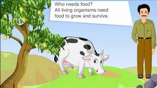 Here is another video from our stem series! watch and learn about the importance of food, its sources how a healthy person conditioned to eat not just...