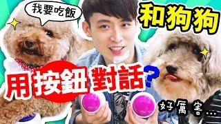 【🤩神奇】🐶狗狗能「用按鈕說話🔴」!?MUFFIN、BROWNIE學會說話了!人狗溝通沒難度啦~ (中字)