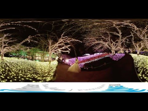 Japan Pre-Wedding Photography - VR 360 Behind the Scenes Video