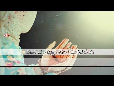 Surah Yasin Beautiful Voice Woman Quran Recitation by Holy Quran