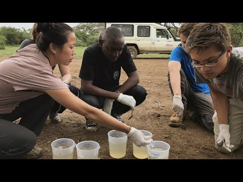 How Ohio State engineering students are bringing clean water to an Tanzanian village: BTN LiveBIG