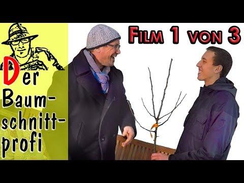 so schneidet man obstb ume mit tipps vom obstbaumprofi film 1 von 3 youtube. Black Bedroom Furniture Sets. Home Design Ideas