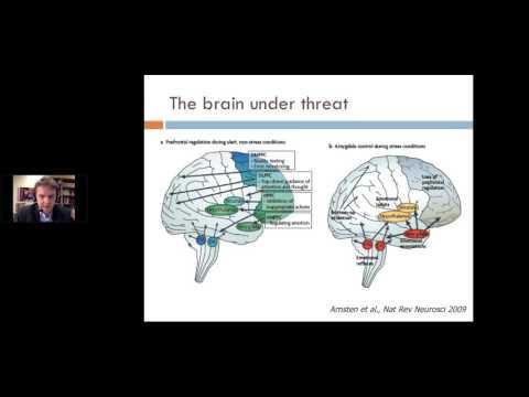 Narrative Exposure Therapy - Frank Neuner