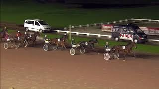 Vidéo de la course PMU PRIX DAVID RONSSE