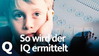 Der IQ-Test und seine Aussagekraft | Quarks
