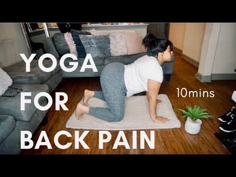 yoga for back pain relief 🌸 yoga with tati  youtube