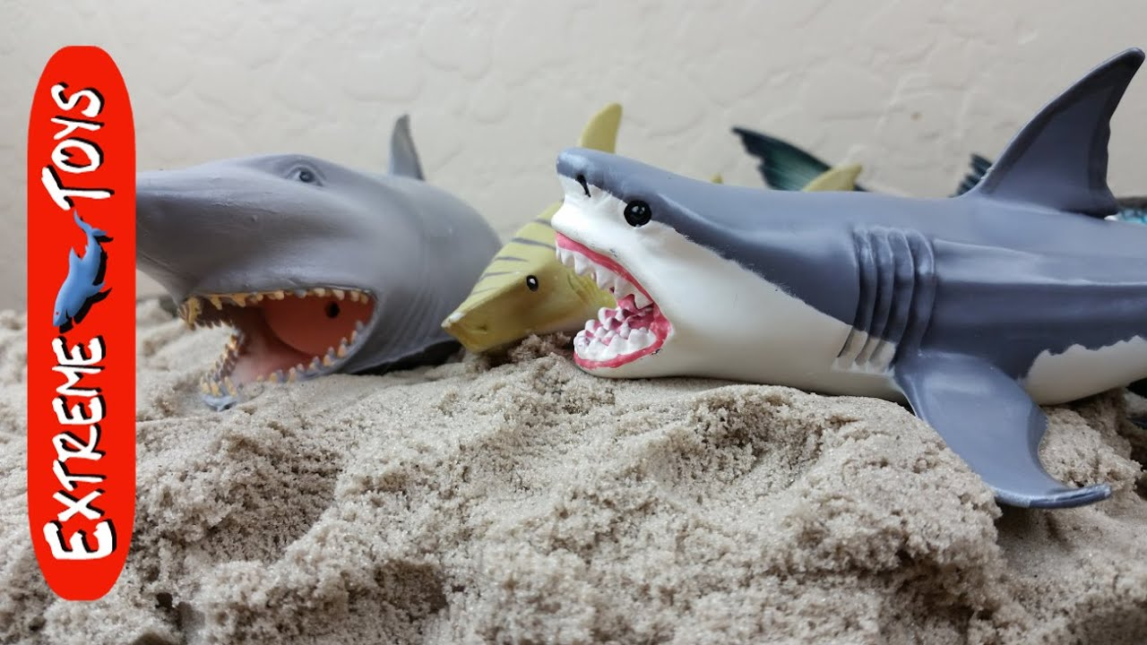 Megaladon Sharks Toys For Boys : Surprise shark toys hidden in kinetic sand youtube