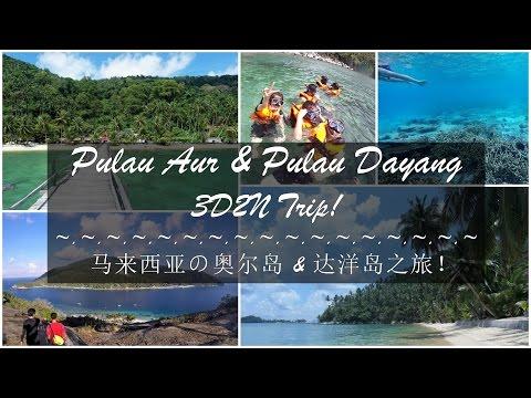 Pulau Aur & Pulau Dayang 3D2N Trip
