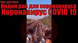 Коронавирус COVID 19, что сейчас происходит в Индии.