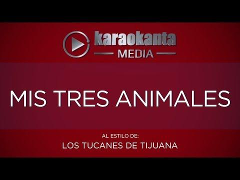 Karaokanta - Los Tucanes de Tijuana - Mis tres animales