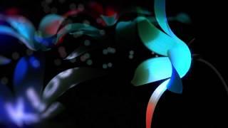 Blossom into fabric 66: Ben Klock