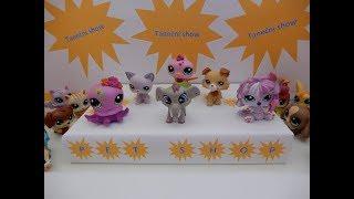 Littlest Pet Shop - Taneční show