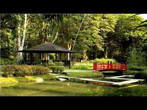 Planejamento, Implantação e Manutenção de Jardins - Jardim Japonês