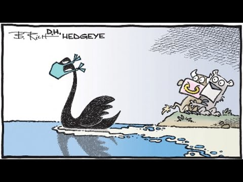 black-swan-here:-dow-has-fastest-10%-drop-in-history