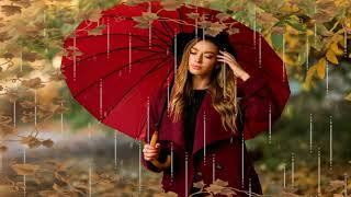 Под осенним дождем (Тимур Рахманов).
