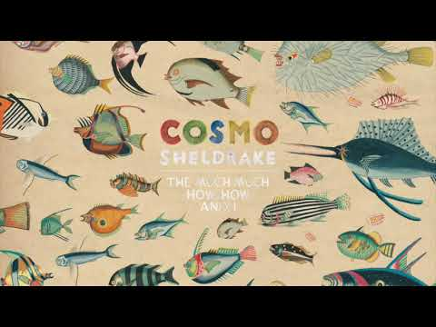Cosmo Sheldrake - Axolotl