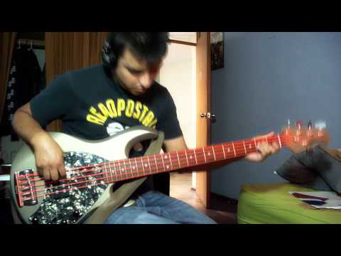 INCUBUS - Summer Romance ( Bass Cover )