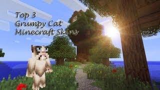 Best Minecraft Skins - Minecraft Skins Grumpy Cat Minecraft Skin - Best Minecraft Skins