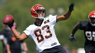 Andrew Hawkins Return? Bengals Training Camp Players To Watch, News; NFL Suspensions/Injuries Impact