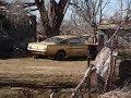 TEXAS:  Land of the dead classics... By Roamin' Rich Dinkela