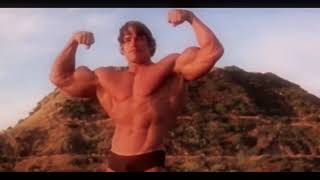 Arnold schwarzenegger : Hall of Fame Motivational video