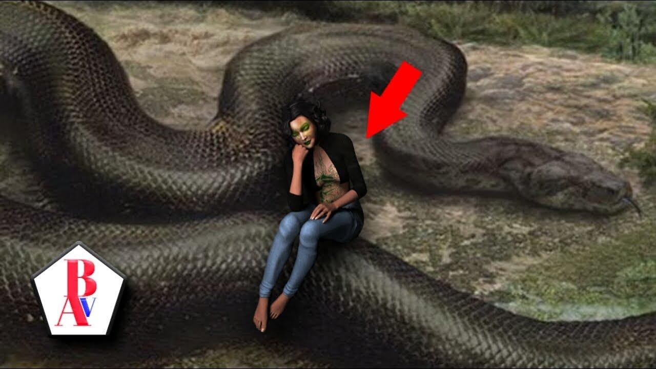 37++ Hewan ular terbesar di dunia terbaru