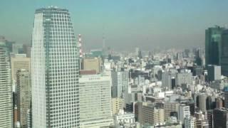 Tokyo Tower 2012 winter