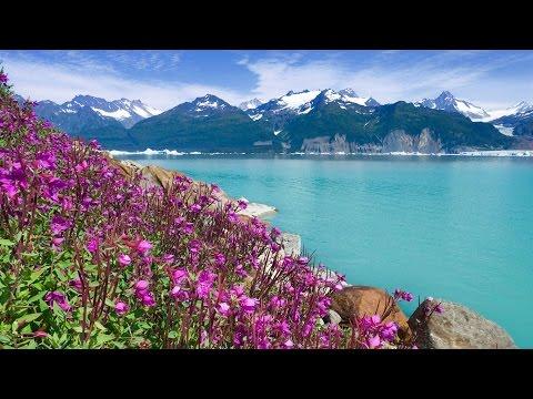 Viking Oceans: Alaska & the Inside Passage