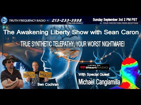 Corporate Gang Stalking and Synthetic Telepathy, TI Mike Cangiamilla