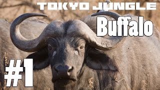 Tokyo Jungle: Buffalo Survive over 100 years Part 1 of 4