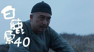 白鹿原 | White Deer 40【DVD版】(張嘉譯、秦海璐、何冰等主演)