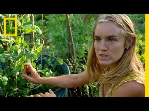gardening-in-small-spaces-|-live-free-or-die:-how-to-homestead