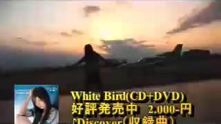 2008年5月、ミニソロアルバム「White Bird」とサンシャインガールズとし...