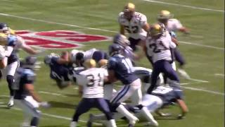 CFL Biggest Hits of 2010