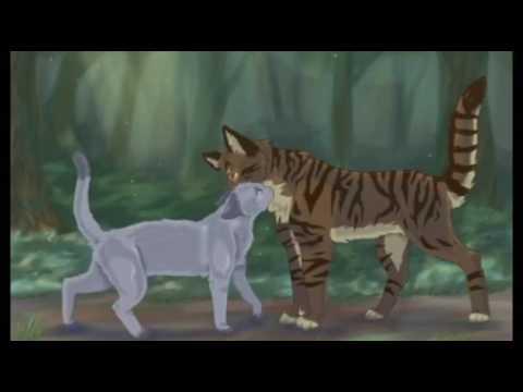 коты воители голубка и шмель картинки стильно