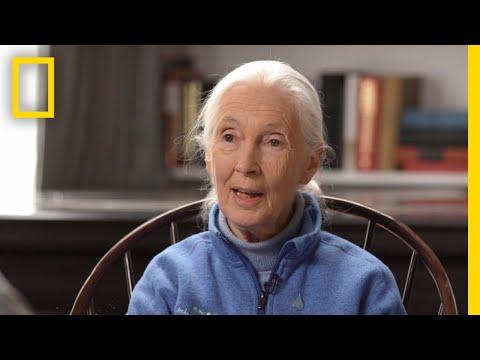Jane Goodall's Inspiration | StarTalk